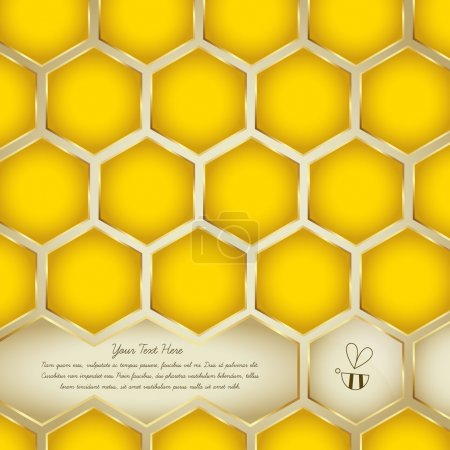 Honey Background Collection