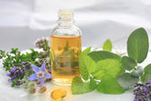 Natural fresh herbs