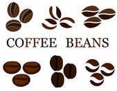 Coffee beans various kinds in collection Vector illustration