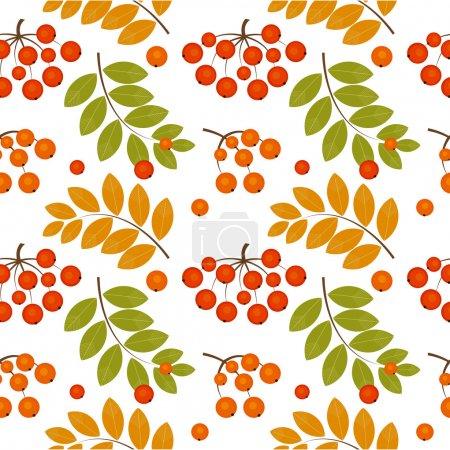 Rowan berry seamless