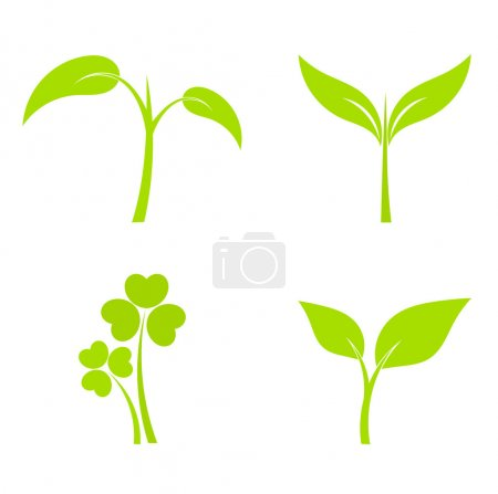 Illustration for Set of four plant or leaf icons. Vector illustration - Royalty Free Image