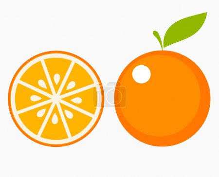 Orange fruit with leaf and slice. Vector illustrat...