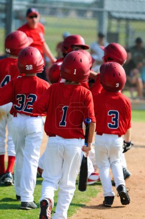 team of little league baseball players