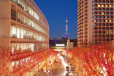 Tokyo street Illuminations