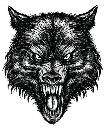 Illustration for Hand Drawn Wolf Linework Vector - Royalty Free Image