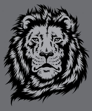 Illustration for Lion Head Vector Lion Head Vector - Royalty Free Image