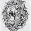 Hand Drawn Abstract Lion Vector Illustration Hand ...