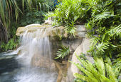 Sentosa Island Waterfall