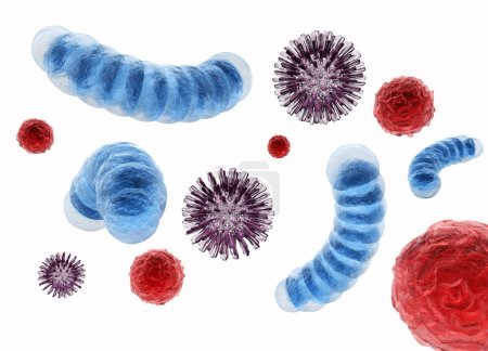 virus and bacteria Cells