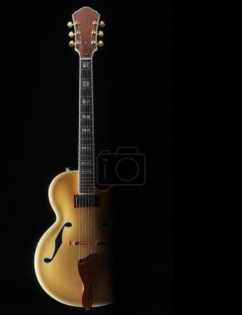 tobago custom jazz guitar