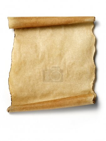 Old blank parchment scroll