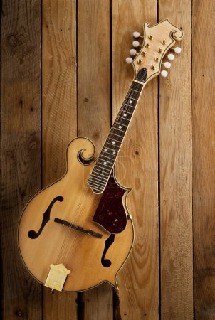 Photo pour Treditionel bluegrass mandoline lattes en bois fond - image libre de droit