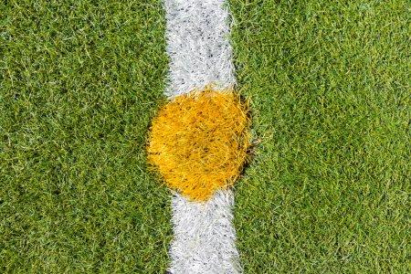 Center of artificial grass soccer pitch
