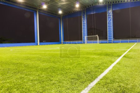 Football (soccer) goal and field