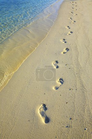 Footsteps on sandy beach