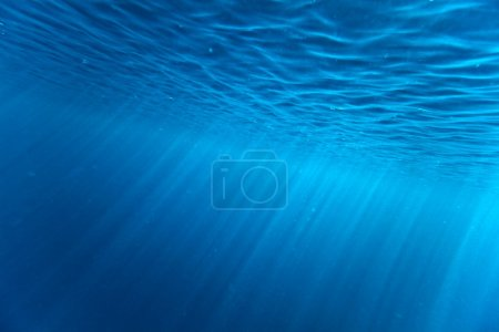 Photo for Blue Underwater Background Texture - Royalty Free Image