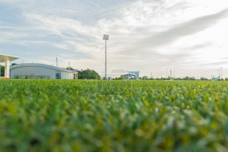 Stadium Ground Level