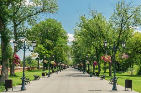 Public Park Alley