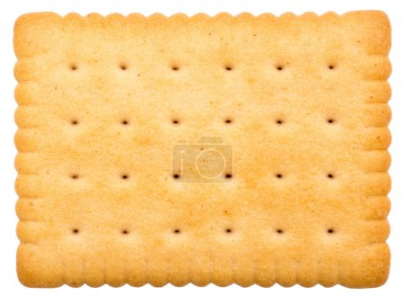 Photo for Biscuit Texture Closeup Details Isolated On White - Royalty Free Image