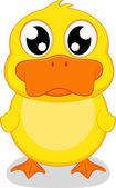 Roztomilá malá kachna