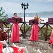 Постер, плакат: Quartet of classical musicians playing at a wedding
