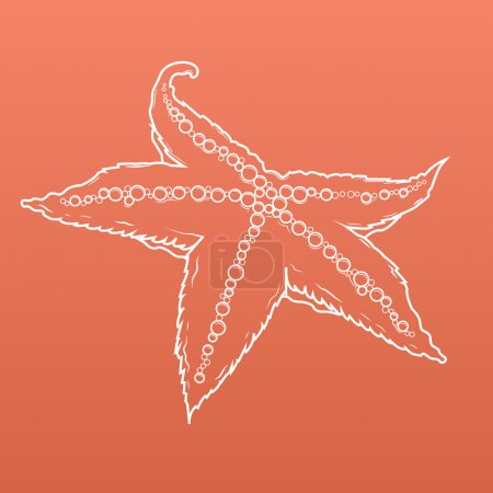 Detailed white outlines of starfish isolated on orange background. Sea star. Vector illustration.
