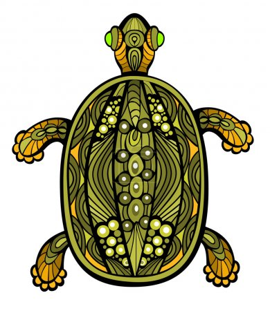 Fancy Turtle
