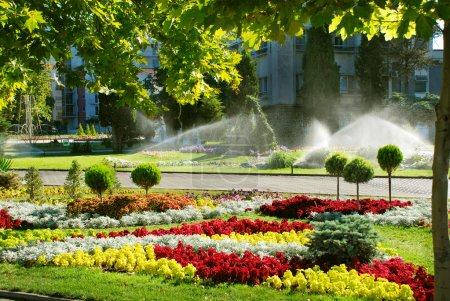 Lawn watering sprinkler