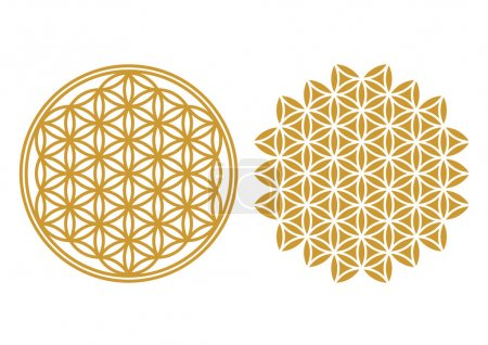 Illustration for The Flower of life is an ancient symbol of Sacred Geometry and represents the fundamental order of creation. - Royalty Free Image