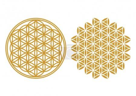 Foto de La flor de la vida es un antiguo símbolo de la geometría sagrada y representa el orden fundamental de la creación - Imagen libre de derechos