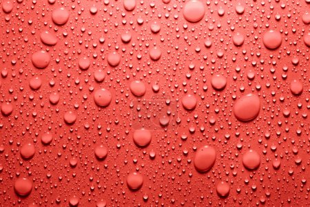 Water drop in red