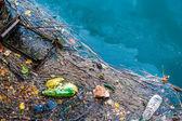 """Постер, картина, фотообои """"старый мусор загрязнение воды и нефтяных пятен на поверхности реки"""""""