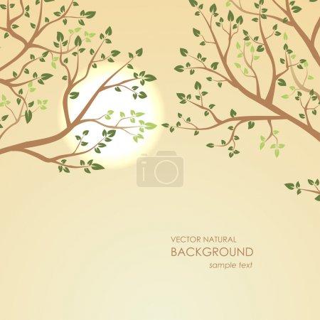 Illustration pour Contexte naturel. Coucher de soleil sur un fond de branches d'arbres - image libre de droit