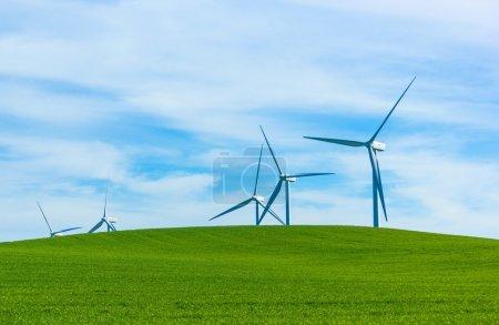 Photo pour Shiloh Wind Power Plant est un parc éolien situé dans les collines Montezuma du comté de Solano, en Californie, aux États-Unis, tout près de Bird's Landing. Il a une capacité nominale de 300 mégawatts (MW) de puissance . - image libre de droit