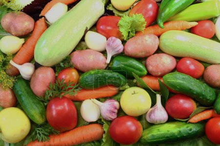 The gifts of nature - a variety of fruits , vegetables and salad