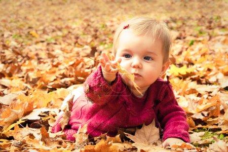 Photo pour Mignon bébé fille jouer avec des feuilles en automne - image libre de droit