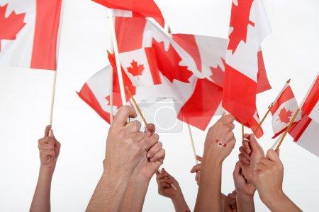 Photo pour Bonne fête du canada ! mains surélevées, agitant des drapeaux canadiens. - image libre de droit