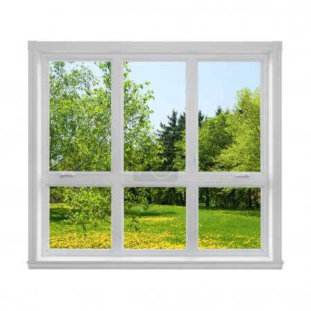 Spring landscape seen through the window