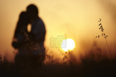 Photo for Pretty couple in the meadow on the sunset background - Royalty Free Image