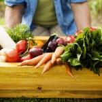 Wooden box filled fresh vegetable
