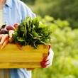 Senior woman holding box with vegetables...
