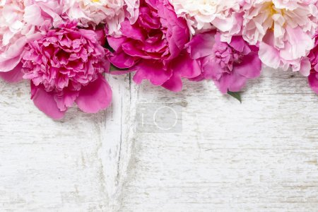 Photo for Stunning pink peonies on white rustic wooden background. Copy space - Royalty Free Image