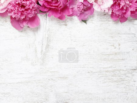 Stunning peonies on wooden background. Copy space