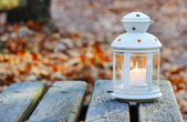 Beautiful lantern on wooden table in autumn forest