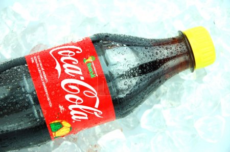 Bottle of Coca-Cola drink on ice cubes