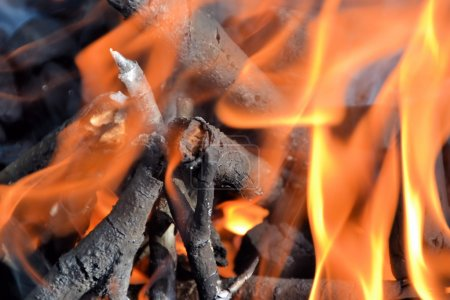 a campfire at a campsite