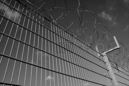 Photo pour Fil de fer barbelé sur une clôture - image libre de droit