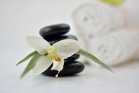 Photo pour Spa pierres chaudes, fleurs et serviettes sur fond blanc - image libre de droit