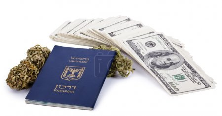 Photo for An Israeli passport, two Marijuana buds and a large stack of 100 US dollar money notes isolated on white background. - Royalty Free Image