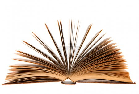 Fanned book over white